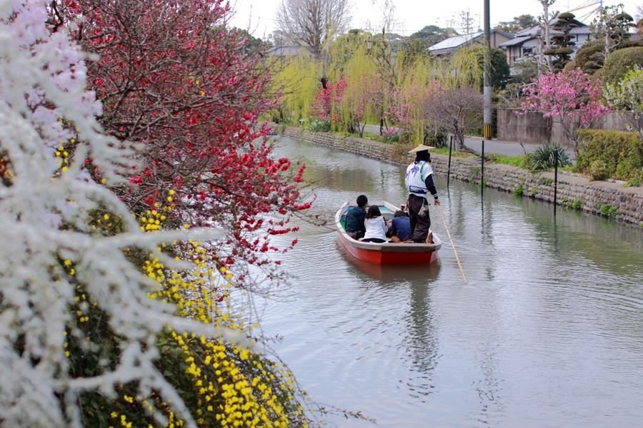 川下り2014春 柳城橋