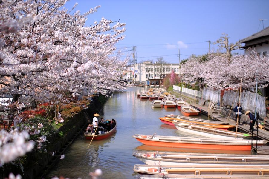 川下り2014春 欄干橋