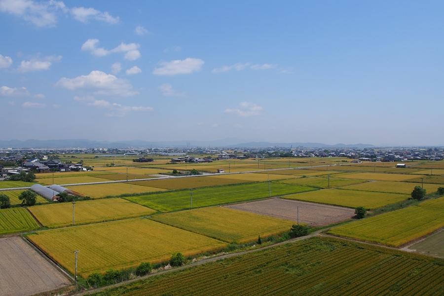 市街地 俯瞰 長田病院
